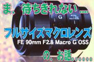フライングすぎる、レビュー! FE 90mm F2.8 Macro G OSS