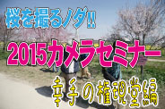 桜の名所「幸手の権現堂」にて プチ撮影会をやっちゃいました!