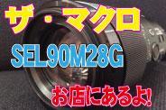 SEL90M28G